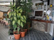 hotel europa minori costa d'amalfi