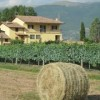 Assisi B&B low cost
