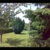 B&B Valmontone Apple Tree al parco giochi di Roma